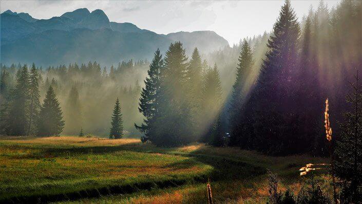 Nature at Durmitor mountain