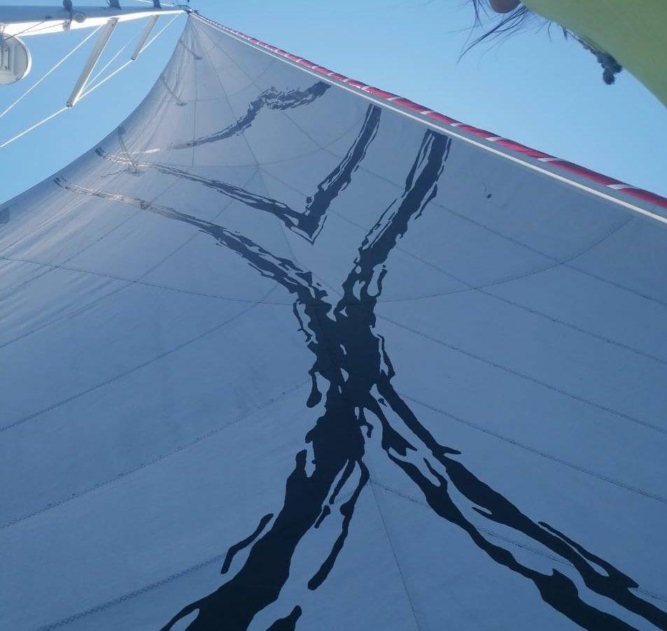 Printed sail